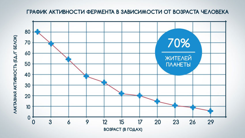Безлактозное молоко наконец в России!